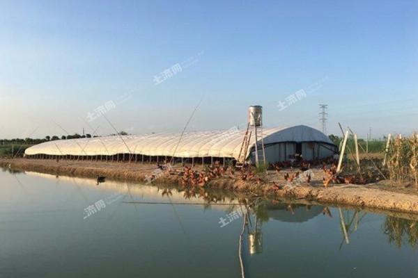 合肥市加快推进农业产业化发展实施意见