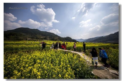 庆元:打造休闲乡村旅游升级版