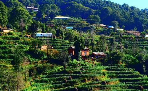 乡村振兴战略将给乡村企业带来哪些新机遇?如何发展乡村企业?