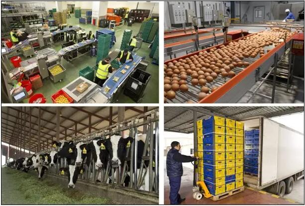 2018年现代农业产业园如何规划和建设?