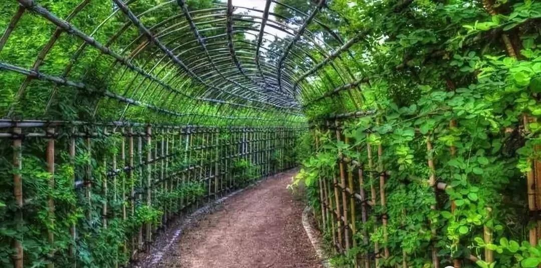 田园综合体与休闲农业旅游有什么区别?