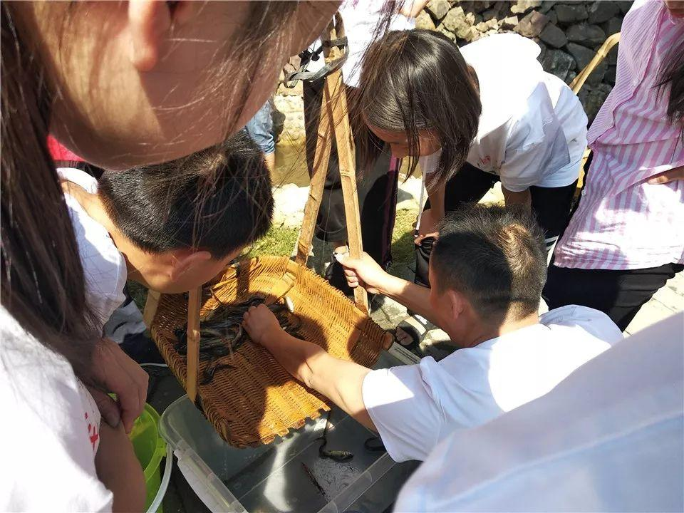 一个农旅结合亲子农场的7大特色活动介绍