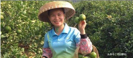 农业数字营销(电商+短视频)案例:农妇拍短视频年入千万的故事
