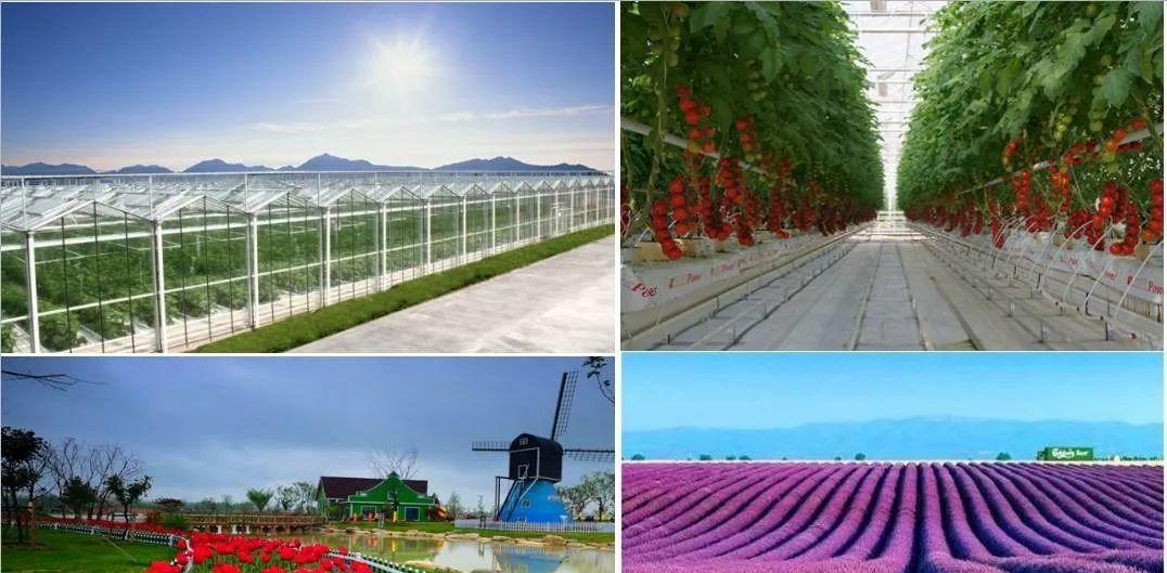 如何深挖田园综合体和休闲农业的体验价值?