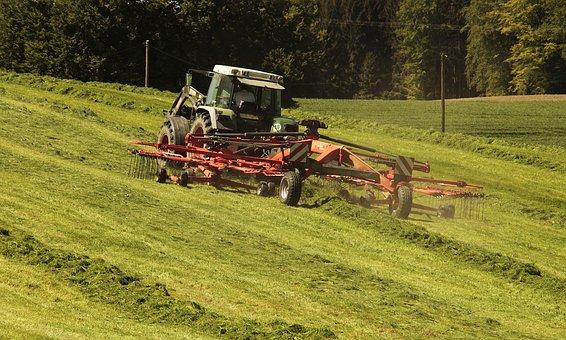 6月可申报的休闲农业项目补贴有哪些?去哪申报?能申报多少钱?(附申报流程)