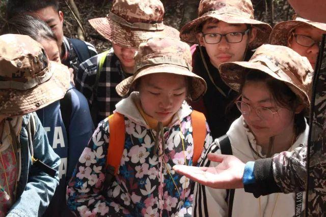 探秘大自然昆虫家族:自然教育课堂之昆虫研学旅行课程|探秘大自然昆虫家族:自然教育课堂之昆虫研学旅行课程