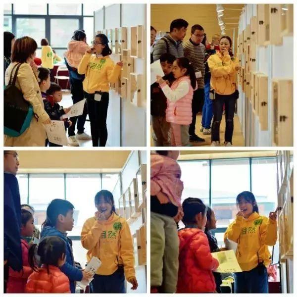 北京昆虫科普展强势登陆宣城|五一假期火爆开馆