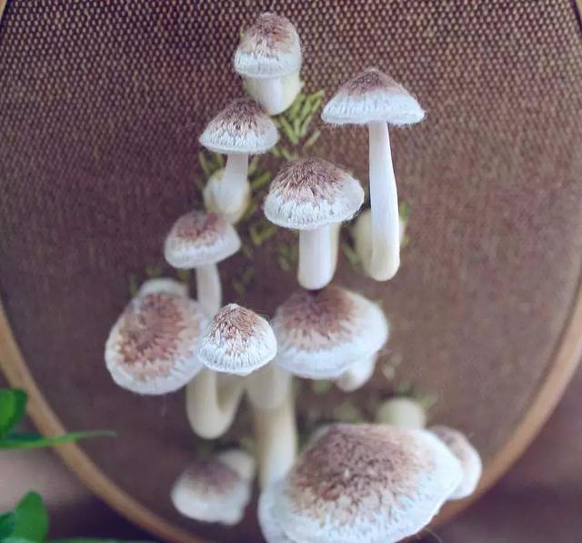 非常逼真的3D蘑菇刺绣,附新手学做刺绣手工的18张蘑菇刺绣图!
