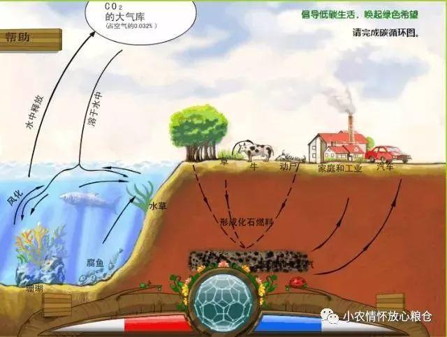 中国农业分布地图及土地污染现状