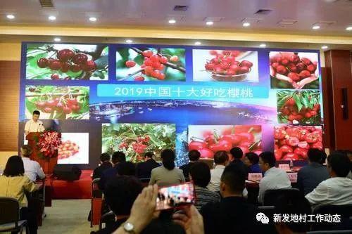 中国农业品牌目录制度建设启动发布会顺利召开