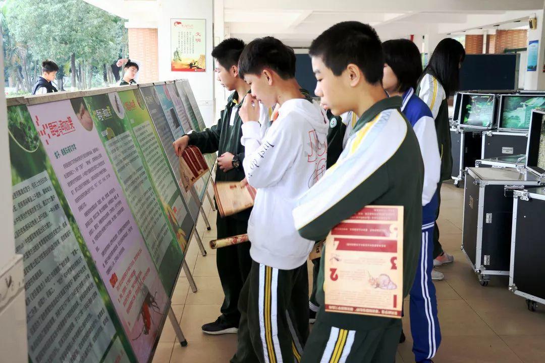 多彩昆虫世界流动展览走进东莞中学松山湖学校,让学生领略昆虫家族的多样与神奇
