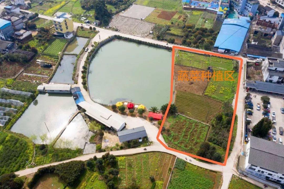广西桂林阳朔的这家农庄藏得够深!地道农家美食好吃又好耍!