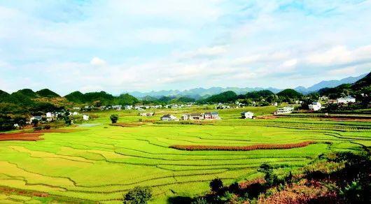 """五部委:到2020年,长江经济带农业农村面源污染治理要有""""疗效""""!"""