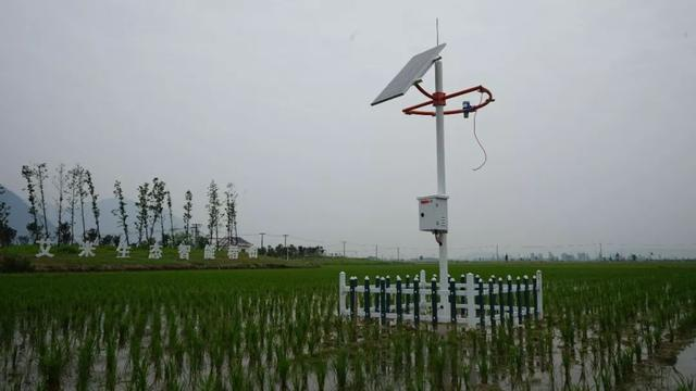 """浙江正式启动""""5G 智慧农业"""",和传统模式有啥不一样?"""