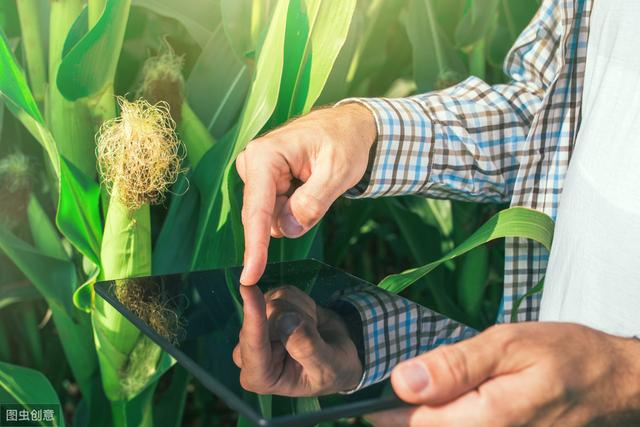 农业电商小程序APP开发——农业与互联网接轨的必然趋势