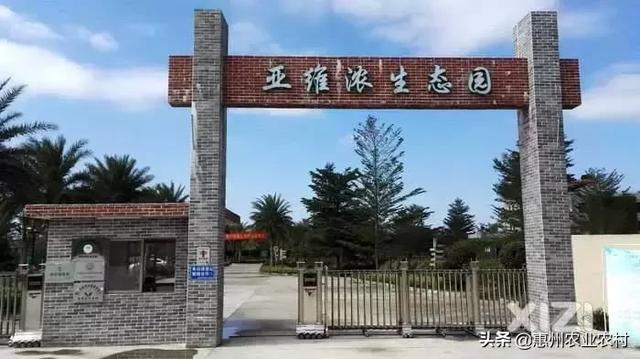 乡村振兴中,惠州农村一二三产业融合发展成效初显