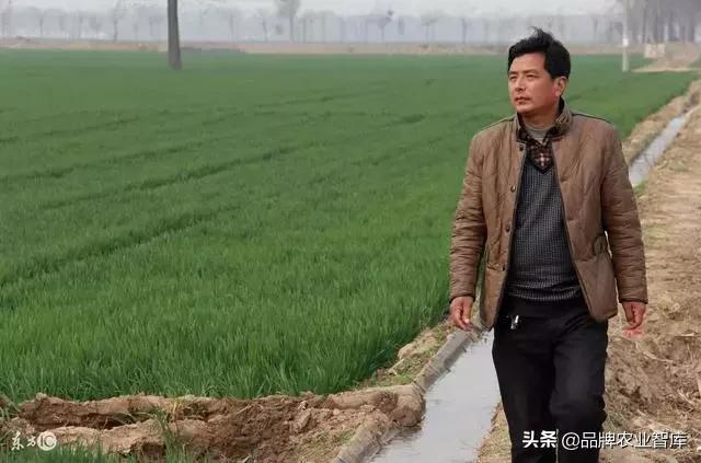 农业种植的10个大坑,做不好钱再多也得掉进去