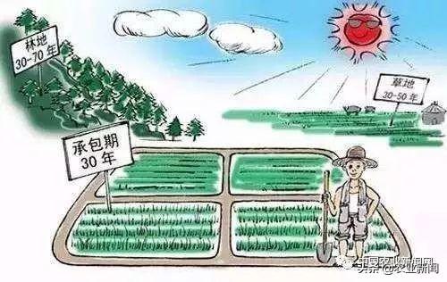 据说农村土地还存在着不小的问题,你了解过吗?