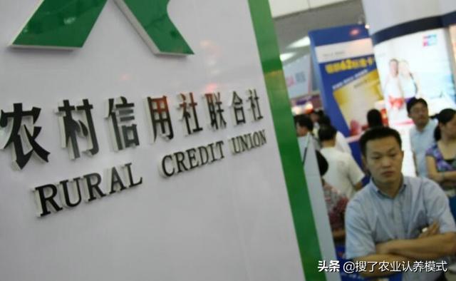 农村2019贷款政策来了解一下!无息、创业贷款有没有符合条件?
