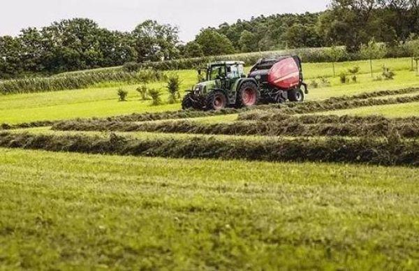 农村这些土地将会被收回!耕地宅基地通通在列,看看你家有没有