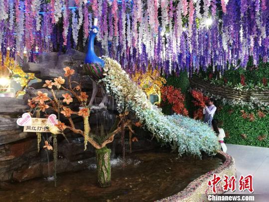 """中国最大花市将升级为""""第一花卉小镇""""预计2020年基本建成"""