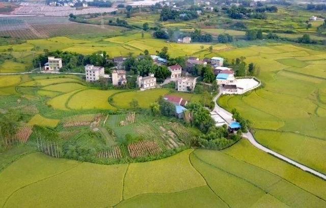 山东23镇要建全国农业产业强镇!潍坊有两个