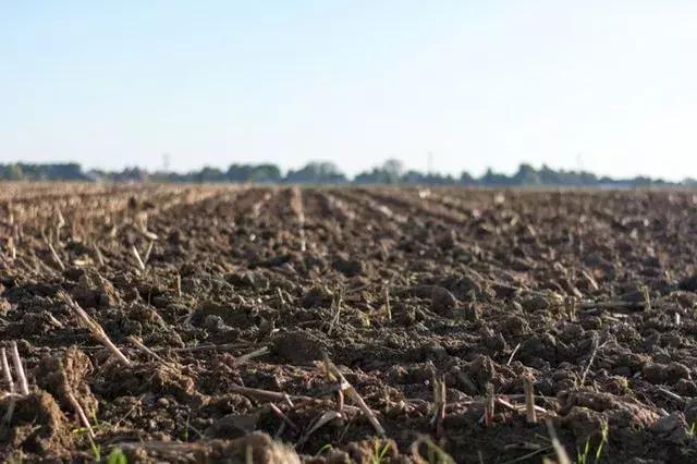 农业困局:为什么的我农产品那么好,还是会滞销?