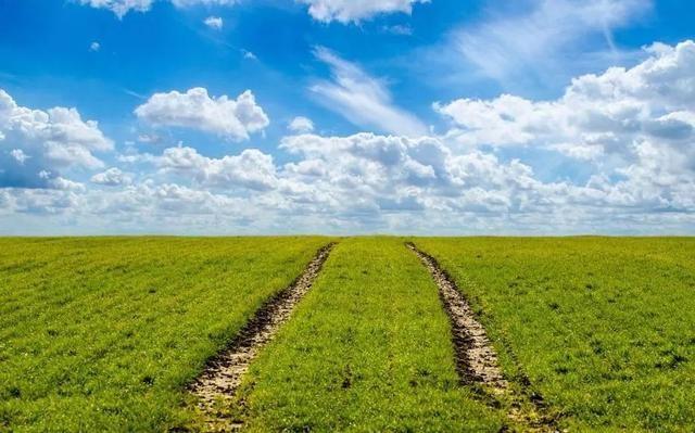 为什么休闲农业不挣钱?不搞懂这几点,千万不要投资休闲农业