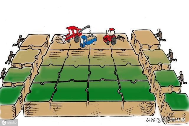 农业农村部:没有农户书面委托,农村基层组织无权以任何方式决定流转农户的承包地