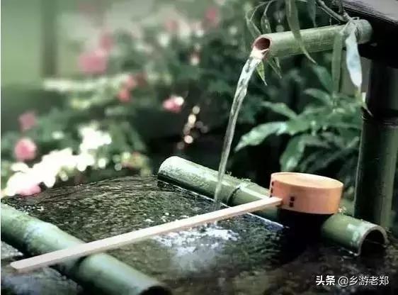 """""""茶庄园""""研学体验"""