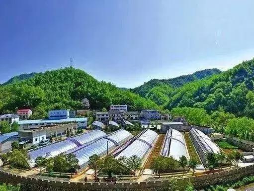 现代农业产业园各省扶持政策一览