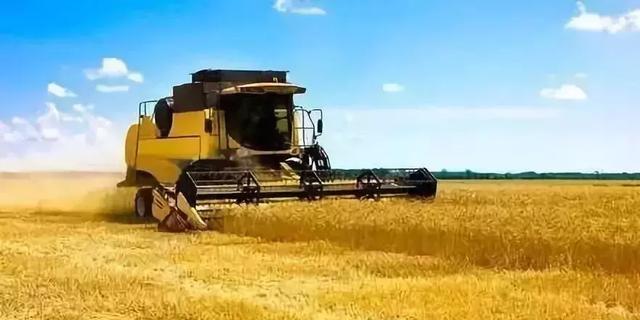 """""""农民真苦,农村真穷,农业真危险"""",农村改革成败关键是什么?"""
