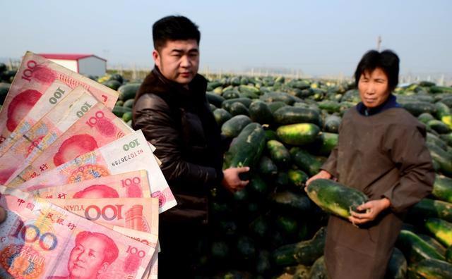 如何更准、更快、成功申报农业项目,拿到钱?