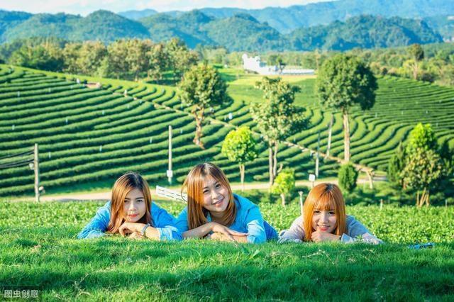 一篇文章解读明白,台湾休闲农业发展30年