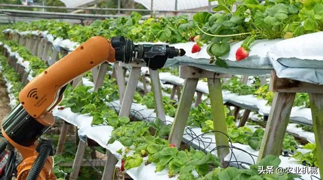 国产农机竞争力为何远不及国外产品?研发投入水平太低