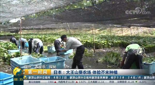 这家休闲农庄上过CCTV,每年吸引120万游客,你敢信?