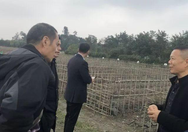 农村新职业:农业经理人,你了解吗?一文详解其工作内容、薪资水平...