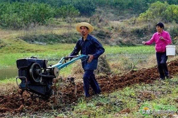 2020年农业补贴发展方向,申请补贴有什么技巧?