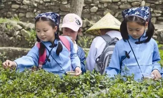研学旅行让父母放下焦虑,教育原来还可以这样