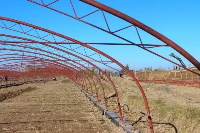 我们为什么需要设施农业?(附政策解读)