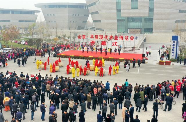 视频|山东·平原现代农业博览会开幕