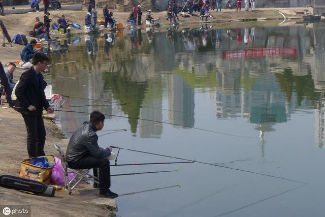 农村五亩小鱼塘这么养鱼,也能轻松实现年入过10W。值得大胆尝试