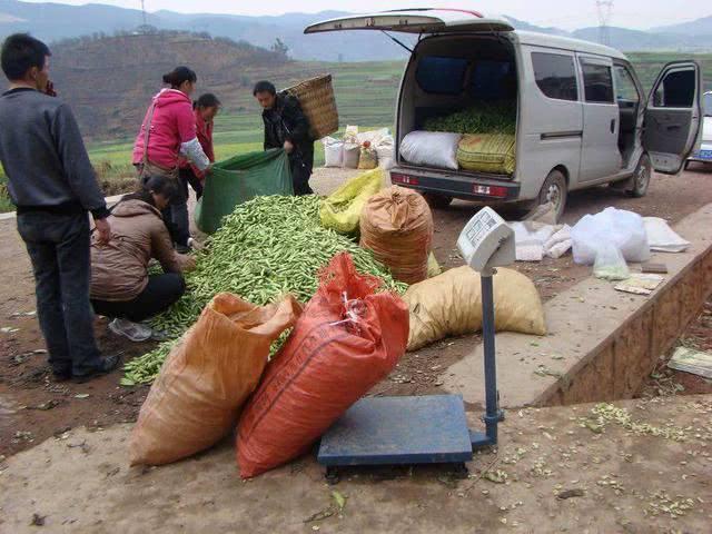 直播带货越来越火,农民通过直播带货销售农产品,却遇到新的困难