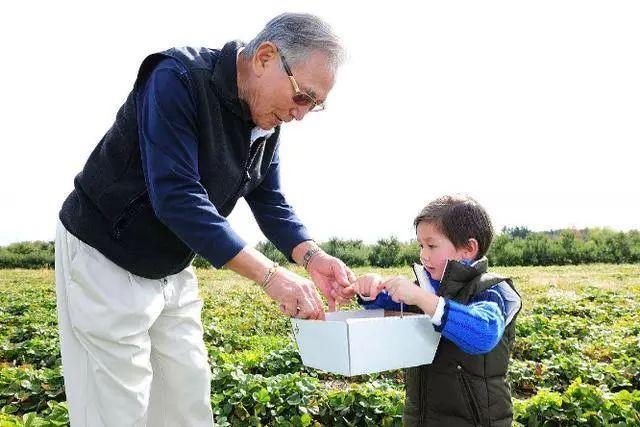 """""""养生民宿、抱团养老型""""农场逐渐升温,未来农场究竟是什么样"""