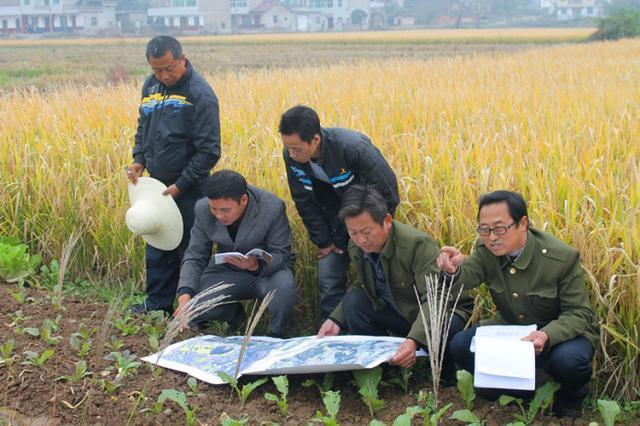 土地承包关系长久不变,还能小调整吗?无地农民有这4条出路