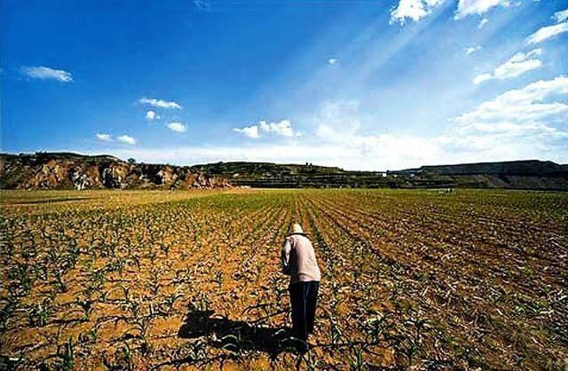 2020年征收补偿新规定:不满足这四个条件,不能征收农民的土地