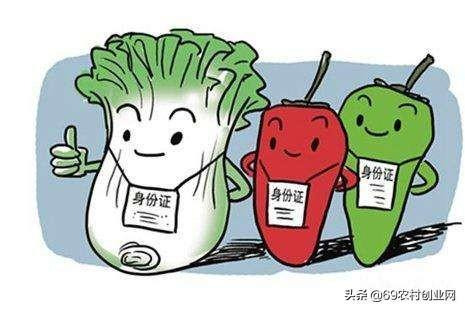 """""""食用农产品合格证""""新制度解读:身份证?承诺书?新名片?"""