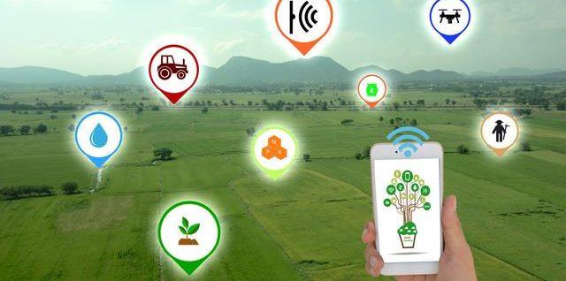 智慧农业:农业大数据的应用带领中国农业跨越