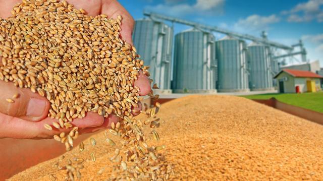 我国粮食安全现状及存在的问题