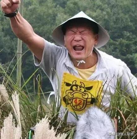 """同样在搞""""一村一品"""",为何日本农村发展的有声有色"""